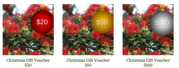 Hunting and Fishing Xmas Voucher